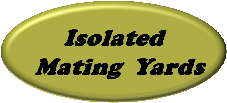 Isolated Mating Yards